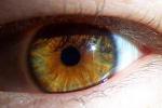 cc-eye.jpg