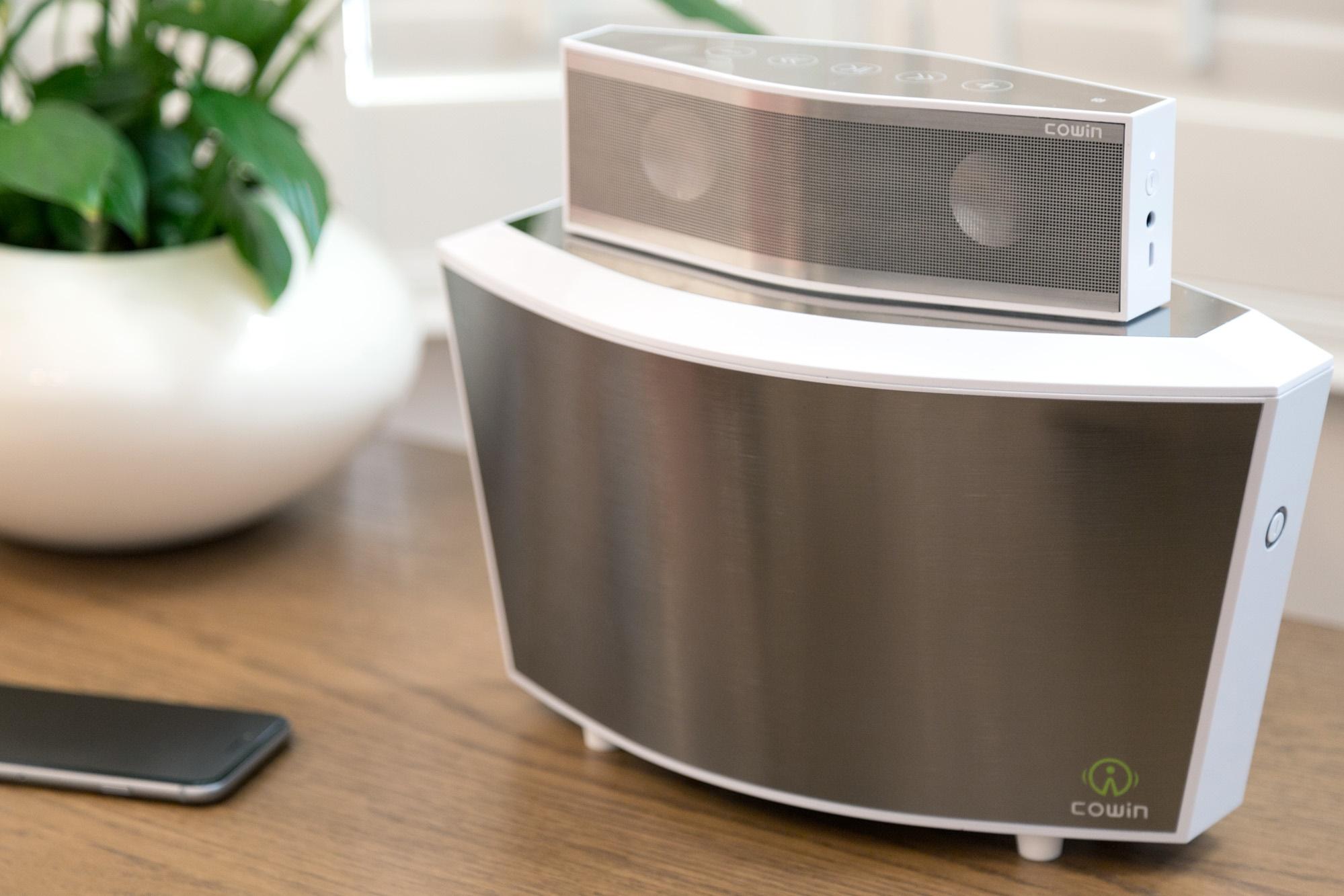 Cowin Ark6 Bluetooth speaker