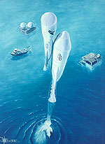 water-launch-sm.jpg