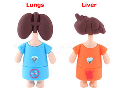 lung-and-liver-usb.jpg