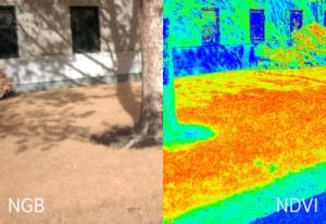 Infragram Infrared camera