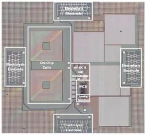 ISSCC swimming chip