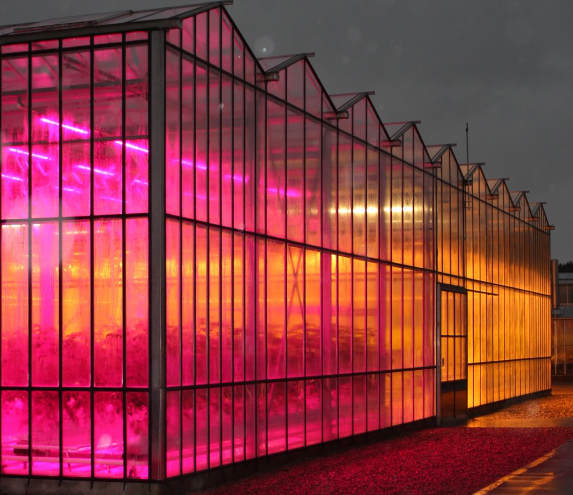 Glhouse Leds Save Greenhouse Ges