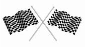 chequered-flag-2.jpg