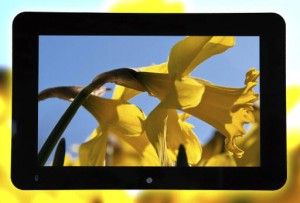 RDS WXGA display - RDS supplies high-res wide-angle 7in and 10in industrial displays