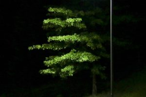 LED street light LRC