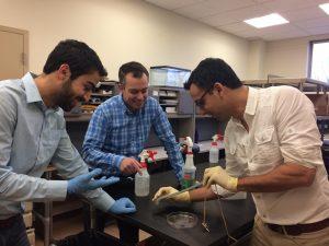 Navid Kazem Jonathan Malen Carmel Majidi Carnegie Mellon - Liquid metal turns elastomer into a heatsink