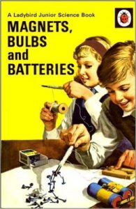 Ladybird Magnets Bulbs and Batteries from Amazon