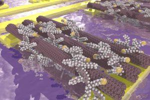 nanotube transistors UofGroningen Arjen Kamp