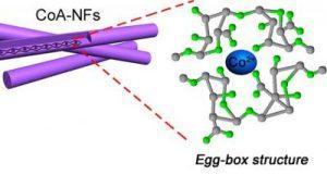 American Chemical Society seaweed eggbox carbon