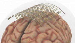 DGIST brain probe - Nanowires offer less damaging brain probe