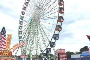 Vishay Wonderfair Wheel