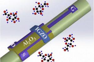 OSU-oxide-transistor-sensor