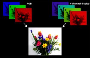 Manchester-RGB-RGCV-display