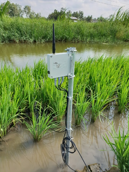 Soil sensor increases crop yields and quality