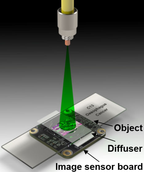 Lens-less microscope-on-a-chip
