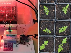 Picture of the Day: Monitoring plants with an Arduino