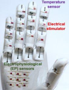 UofHouston-резиновый-транзисторный-робот-рука