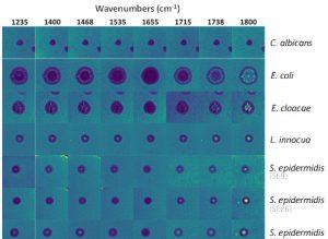 Лети-ик-спектр-визуализация