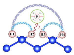NagoyaCityU proton entangle